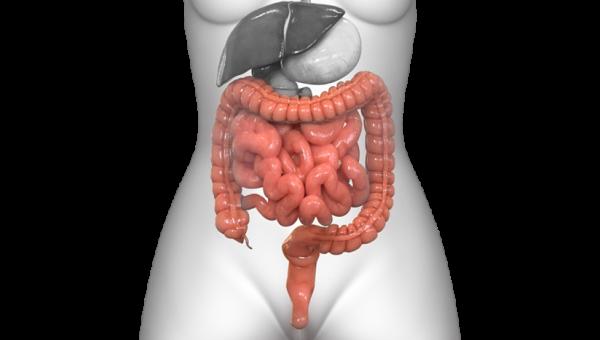 Coloproctología